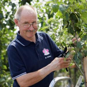 Garten-Tipp: Obstbaumschnitt